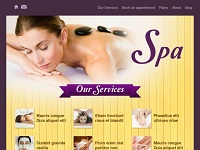 website-designing-in-delhi-seo-search-engine-optimization-beauty-1a.jpg